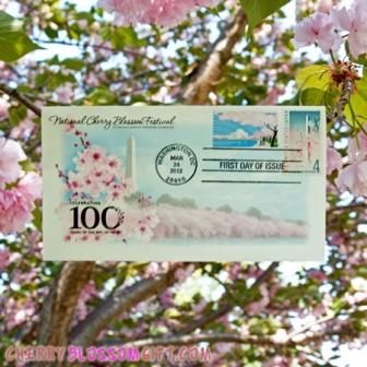 Cherry Blossom 100 Year of Issue Envelope